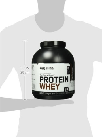 Optimum Nutrition Protein Whey - 6